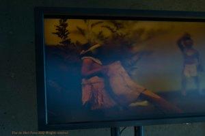 http://catherineherrera.photoshelter.com/gallery/Bridge-Walkers-2012-Hamon-Education-Tower-de-Young-Museum-photos-by-Catherine-Herrera/G0000NOQ2uWCw9KI/C0000K8o4KXIdjG8